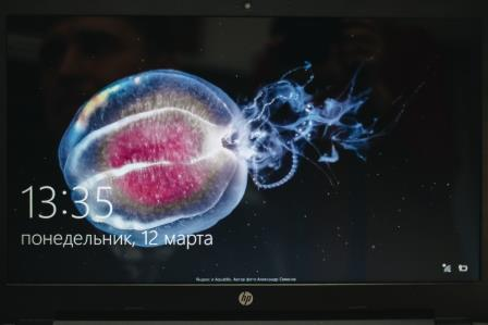 ноутбук экран
